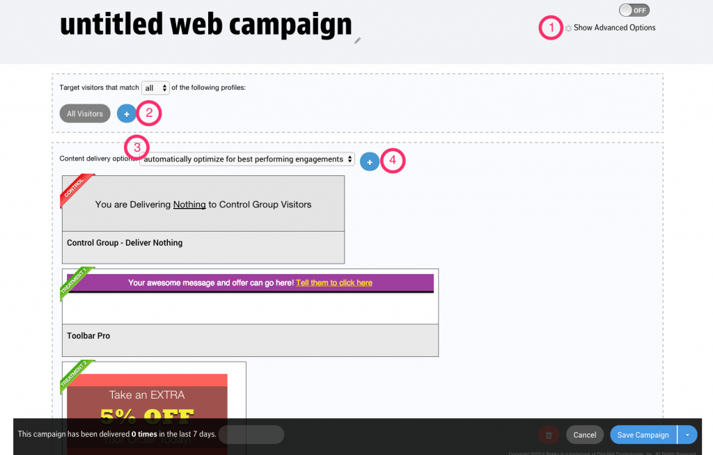 Web (Manual) Campaign with Advanced Options hidden